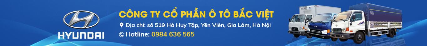 bacviet-hyundai.com
